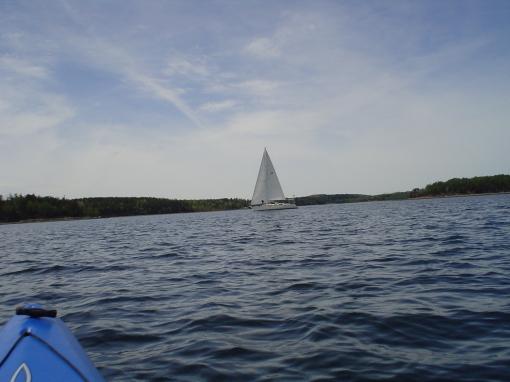 Lone yacht 3