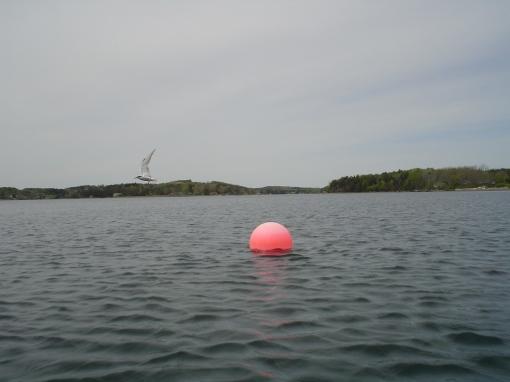 Tern off