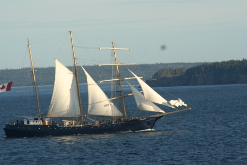 Concordia returning