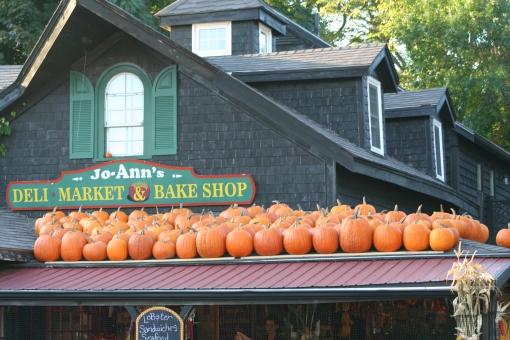 Pumpkins 3