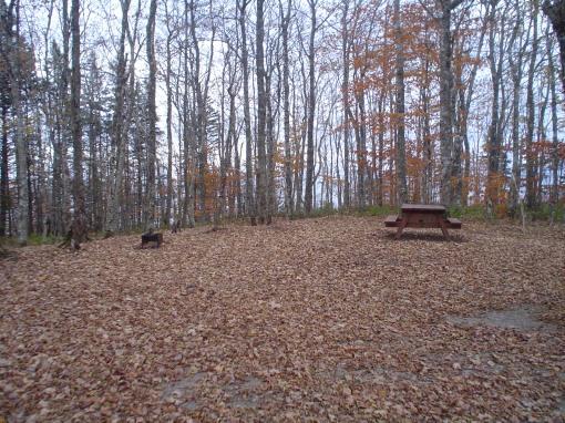 camping spot 1